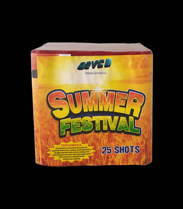 Summer Festival 25 Shorts